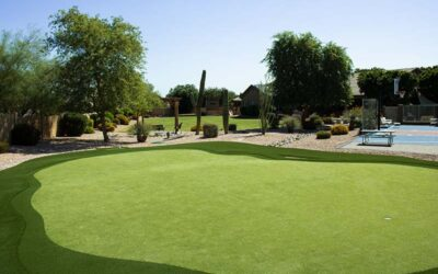 Artificial Turf Saves Water